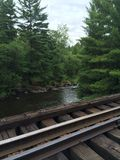 跑通过森林的铁轨 免版税库存照片