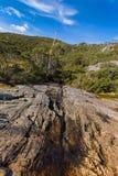 跑通过火山的玄武岩岩石的水自然小河在 免版税库存图片