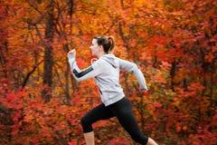跑通过秋天森林的可爱的少妇 免版税图库摄影