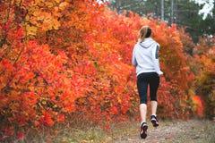 跑通过秋天森林的可爱的少妇 免版税库存图片