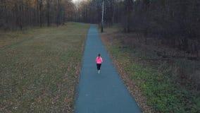 跑通过秋天森林的妇女的鸟瞰图在日落 股票录像