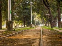 跑通过maidans的平直的电车线在加尔各答 库存照片