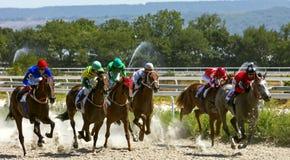 跑马在Pyatigorsk 免版税库存照片