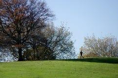 跑-休闲和体育 库存图片