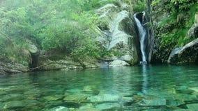 跑从瀑布的清楚的淡水 影视素材