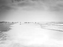 距离的人们在海滩处于低潮中 库存图片