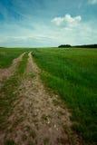 跟踪的农厂天空 免版税库存照片