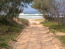 跟踪的海滩 免版税库存照片