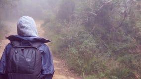 跟随对旅游女孩与背包那走沿远足雨衣的热带森林妇女进来在湿木头 股票视频