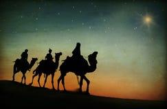跟随星的三位国王 免版税图库摄影