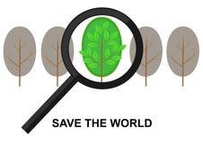 跨接在一棵绿色树的放大镜 免版税库存照片