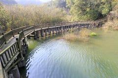 跨接城市木弯曲的捷克欧洲mezirici共和国sske的vala 免版税库存照片