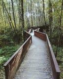 跨接木 免版税图库摄影