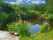 跨接池塘 库存照片