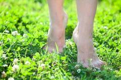 跨步在绿草的女性腿前面特写镜头视图  库存照片