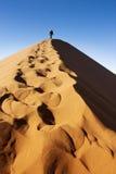 跨步沙丘 免版税库存照片