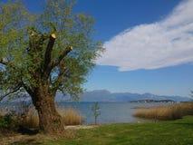 跨过在湖上的偏僻的云彩天空 库存照片