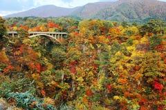 跨过横跨有五颜六色的秋天叶子的Naruko峡谷的高速公路桥梁的宏伟的视图在垂直的岩石峭壁在宫城, 库存图片