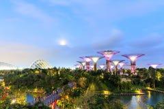 跨过101公顷被索还的土地在中央新加坡,广告 免版税库存照片
