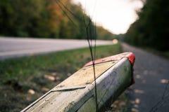 路、路标和森林 免版税库存照片