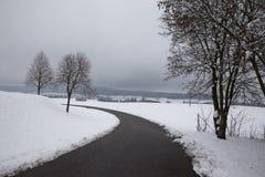 路、雪和树 库存照片