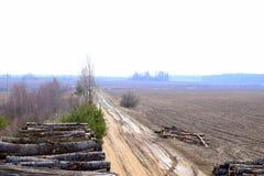 路、领域和森林 免版税库存图片