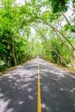 路与不通过与线是坚实的,在路边o 库存图片