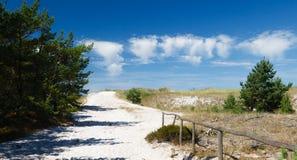 路低谷在波儿地克的海岸,波兰的沙丘 库存照片