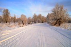 路冬天 免版税库存照片