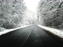 路冬天 库存照片