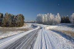 路冬天 免版税库存图片