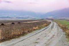 路到雾风景里 库存照片