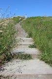 路和台阶在自然好日子 免版税库存照片