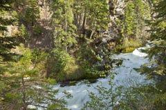 路和树和雪加盖的山 免版税库存图片