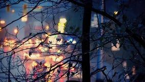 路和树在多雨晚上