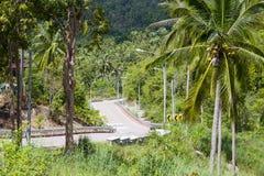 路和棕榈树 海岛酸值Phangan,泰国 图库摄影