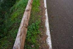 路和森林 免版税库存图片