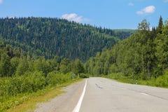 路和森林 库存图片
