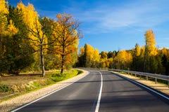 路和秋天 库存照片