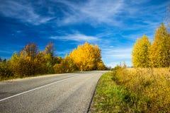 路和秋天 免版税图库摄影