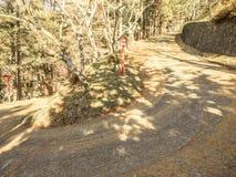 路和走道曲线对小山有森林背景为 免版税库存照片