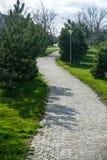 路在一个平安的绿色庭院里 免版税库存照片