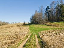 路在乡下 领域、一个小森林和道路 美好的早期的春天 自然醒 库存图片