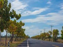 路在乡下 免版税图库摄影