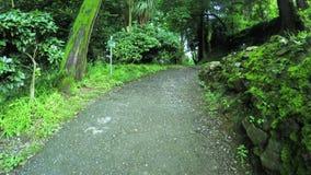 路在公园 影视素材