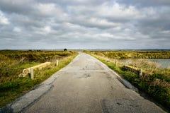 路在农村布里坦尼,法国 免版税库存照片