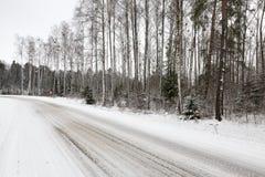 路在冬天 免版税图库摄影