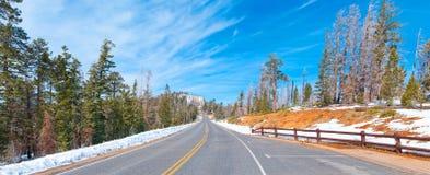 路在冬天 免版税库存照片