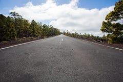 路在国家公园泰德峰 高涨tenerife 库存照片