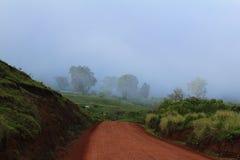 路在坦桑尼亚 免版税库存图片